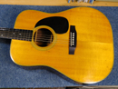 Aria Dreadnought D-80