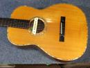 Ayers Guitar
