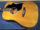 Gibson SJ Deluxe