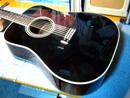 Takamine PT010 12弦