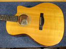 Fender ESA 10CE