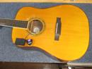 Larrivee Guitar
