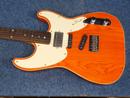 Robin Guitar
