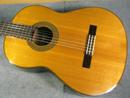 Yamaha GC-5M