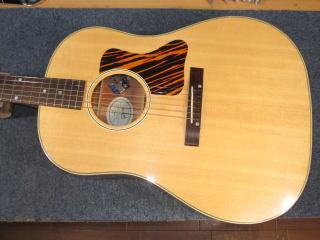 Gibson J-35