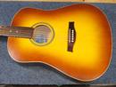 Seagull Guitar