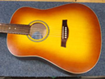 seagull-guitar