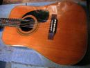 フジゲン・ギター