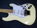Schecter ギター