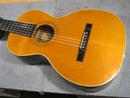 Washburn Model 111