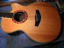 Yamaha Compass Guitar
