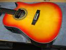 ZENN ギター