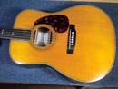 Arcadian ギター
