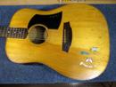 コールクラーク・ギター