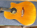 Ovation 1995 Collector's Series