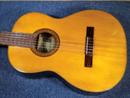 KAWAIギター GT-50