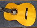Sakurai Masaki Guitar