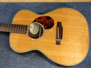 Breedlove Guitar