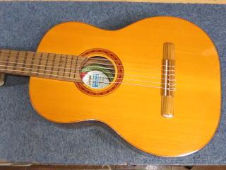Di Giorgio Guitar
