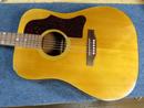 Gibson J-45/50