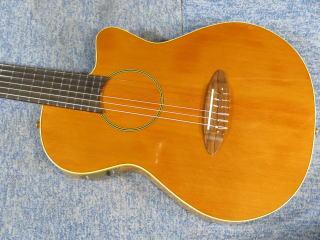 Carruthers Guitars、エレガット、リペア、修理、ナインス、杉並、カラザース・ギター