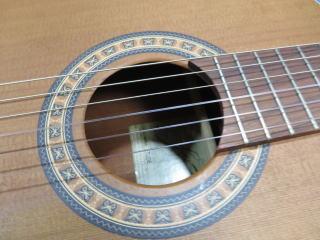 La Patrie Etude Guitar、修理、ナインス、杉並、東京、リペア、メンテナンス