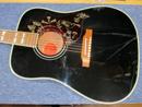 Gibson Hummingbird 50th Anniversary