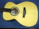 サイモン&パトリック ギター